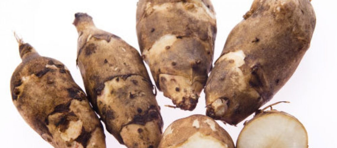 prebiotics, jerusalem artichokes, chicory